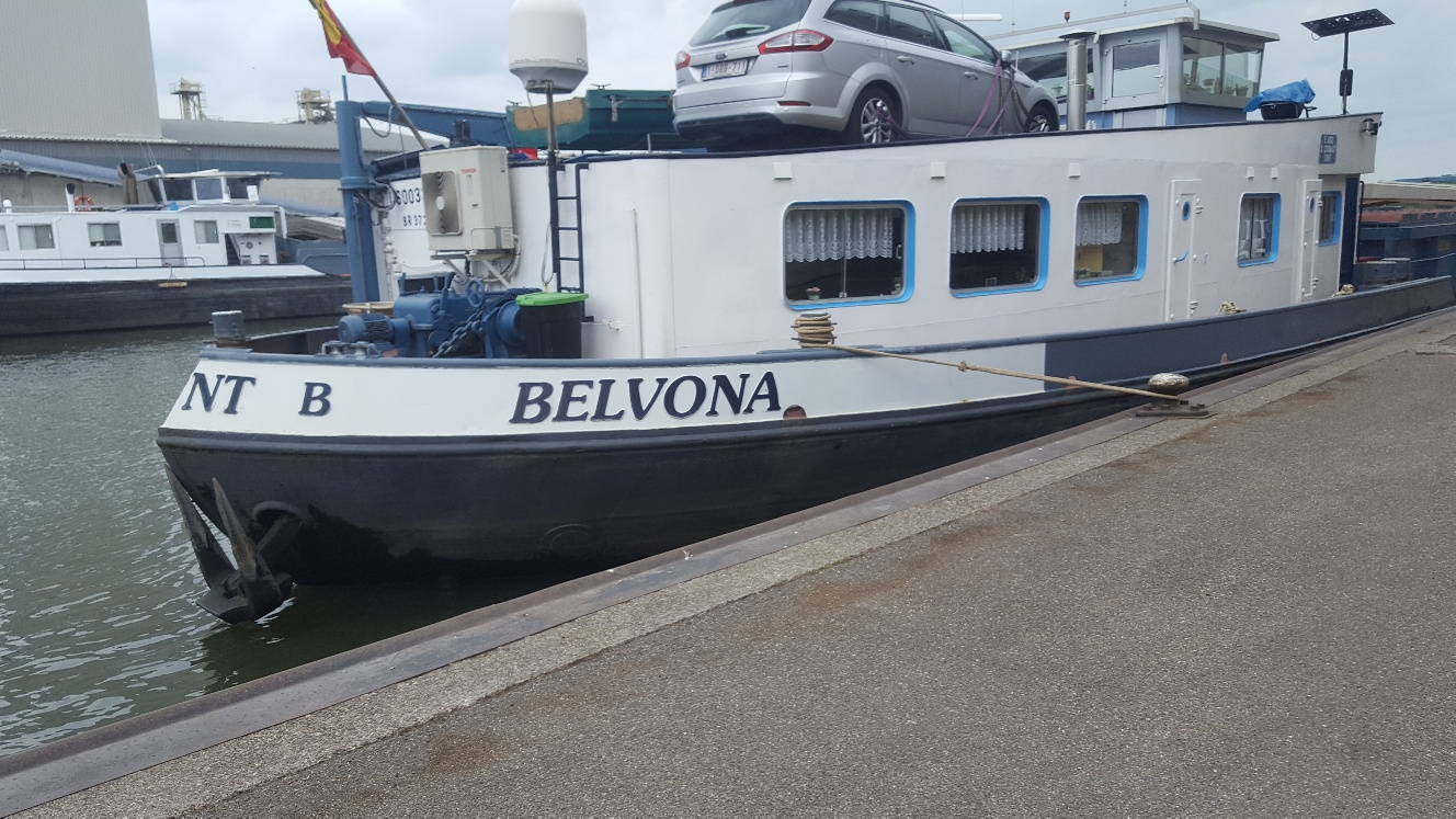 Belvona Concordia Damen