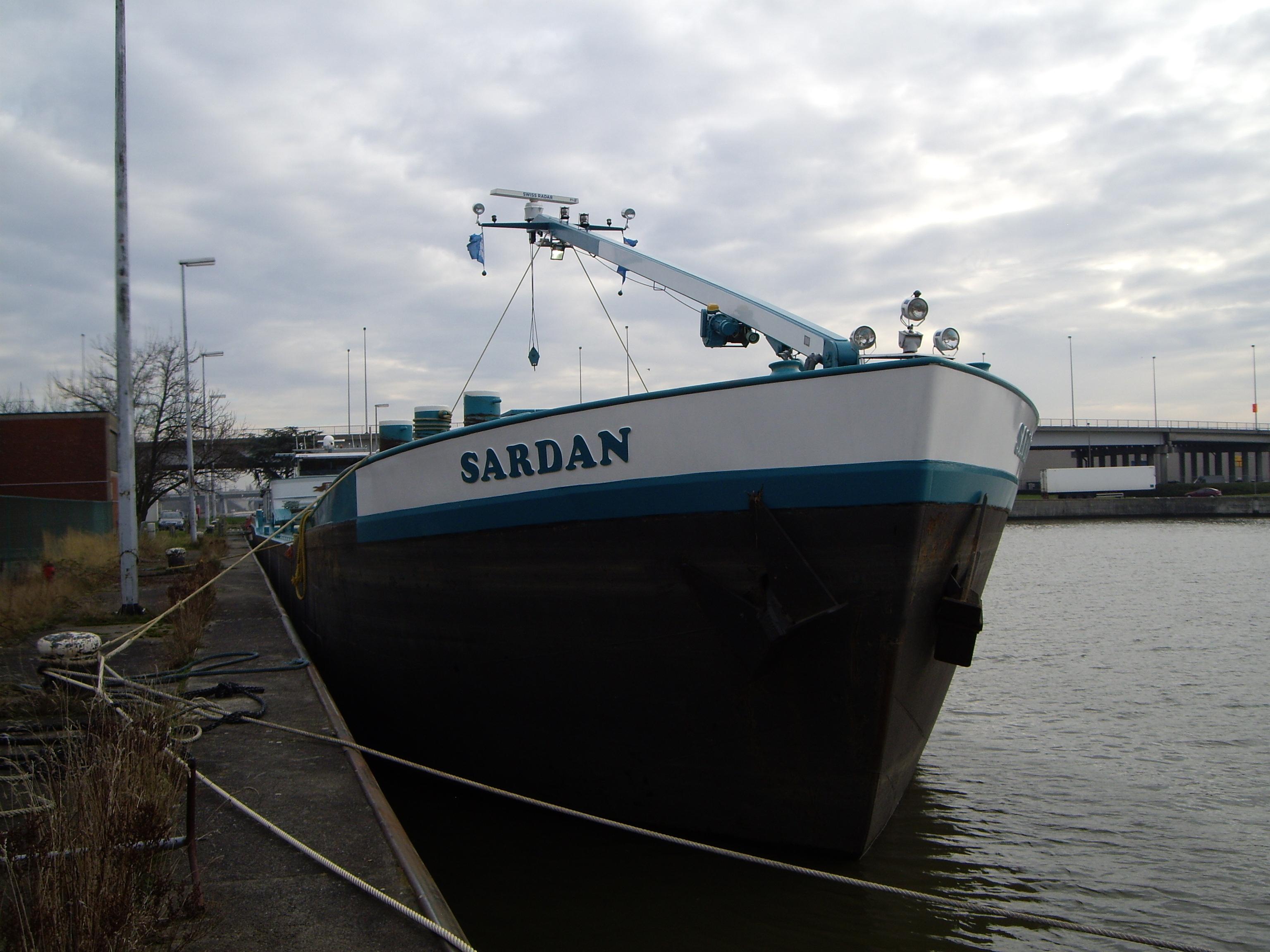 Sardan Concordia Damen