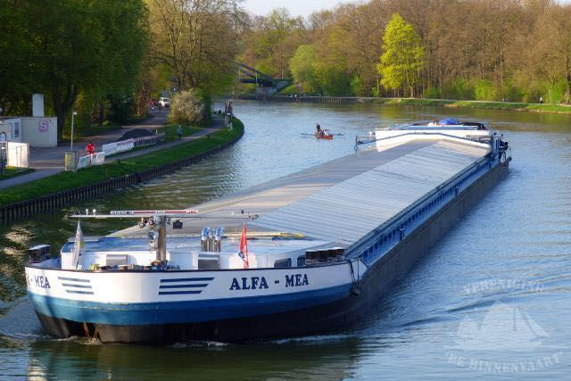 Alfa Mea Concordia Damen