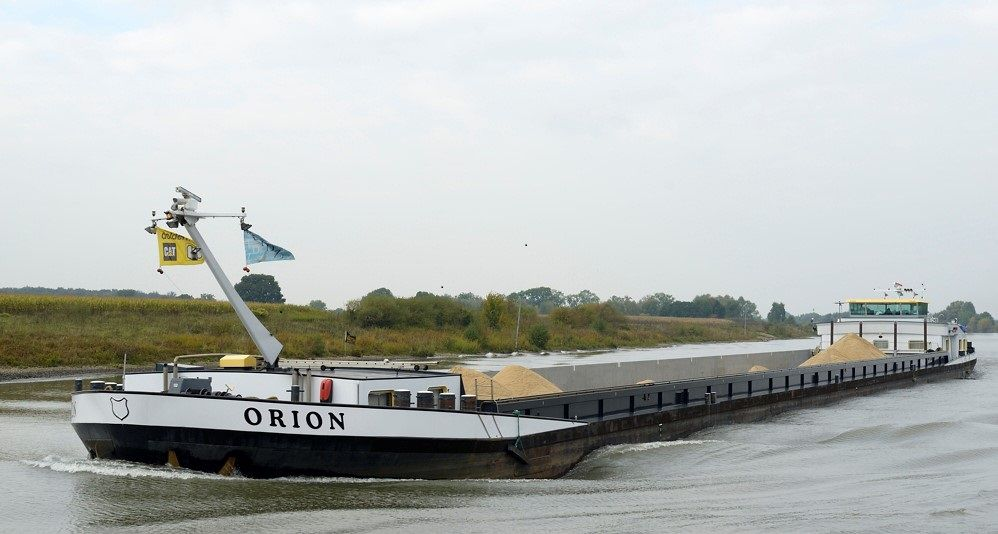 Orion Concordia Damen